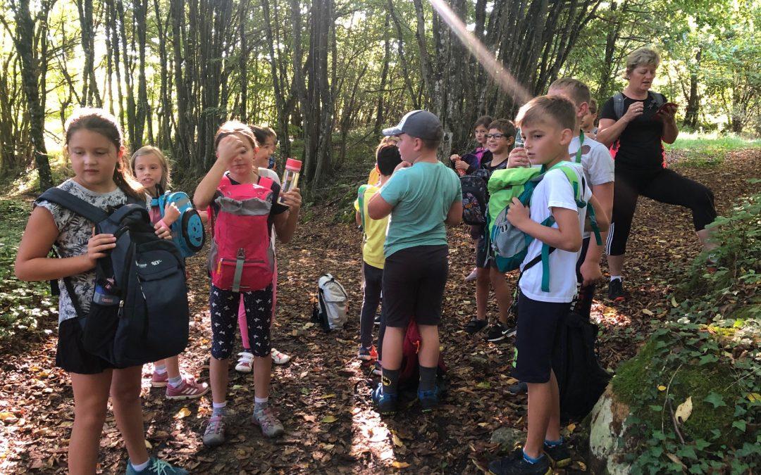 Športni dan v 4. in 5. razredu – Jesenski pohod